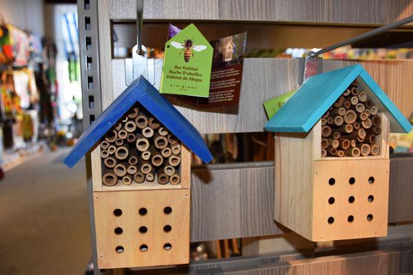 Evergreen Bee Habitat